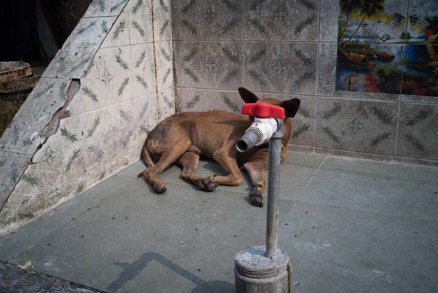 Необычный взгляд испанского фотографа на повседневные сцены уличной жизни